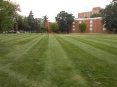 Campus Greenary